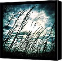 Bestoftheday Canvas Prints - Wasteland Canvas Print by Mark B