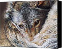 Elena Kolotusha Mixed Media Canvas Prints - Watchful Rest -close-up detail Canvas Print by Elena Kolotusha
