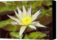 Dewy Painting Canvas Prints - Water lily Canvas Print by Odon Czintos