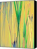 Akermans Art Canvas Prints - Water Reeds Soft Canvas Print by Beth Akerman