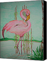 Pink Flamingo Drawings Canvas Prints - Watercolor Pencil Flamingo Canvas Print by Christina A Pacillo