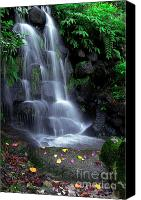 Wet Canvas Prints - Waterfall Canvas Print by Carlos Caetano
