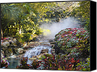 Barbara Middleton Canvas Prints - Waterfall in the Mist Canvas Print by Barbara Middleton