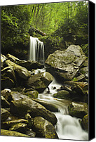 Solitude Canvas Prints - Waterfall in the Spring Canvas Print by Andrew Soundarajan