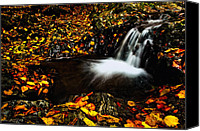 Motion Pyrography Canvas Prints - Waterfall Canvas Print by Irinel Cirlanaru