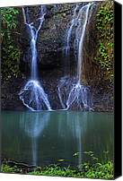 Williams Canvas Prints - Waterfall- Micoud- St Lucia Canvas Print by Chester Williams