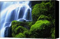 Wahkeena Creek Canvas Prints - Waterfall On Wahkeena Creek, Columbia Canvas Print by Natural Selection Craig Tuttle