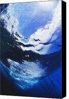 Water Art Canvas Prints - Wave Breaking From Underw Canvas Print by Ali ONeal - Printscapes