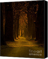 Wood Pyrography Canvas Prints - Way in the Forest Canvas Print by Zafer GUDER