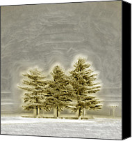 Joyful Canvas Prints - We Three Trees Canvas Print by Bill Tiepelman