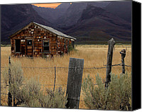 Old Cabins Canvas Prints - Weathered and Worn Canvas Print by Lydia Warner Miller