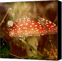 Magic Mushroom Canvas Prints - Welcome To Wonderland Canvas Print by Odd Jeppesen