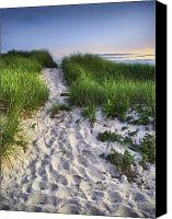Cape Cod Canvas Prints - Wellfleet Beach Path Canvas Print by Tammy Wetzel