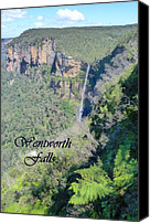 Koala Canvas Prints - Wentworth Falls Canvas Print by Carla Parris