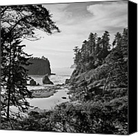 Olympic National Park Canvas Prints - West Coast Canvas Print by Sbk_20d Pictures