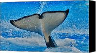 Whale Photo Canvas Prints - Whale Of A Tail Canvas Print by Linda Pulvermacher