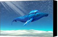 Cow Canvas Prints - Whales Canvas Print by Corey Ford