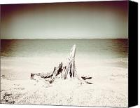 Ocean Pyrography Canvas Prints - What Remains-Sepia Play Canvas Print by Chris Andruskiewicz