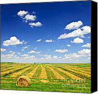 Hay Canvas Prints - Wheat farm field at harvest Canvas Print by Elena Elisseeva
