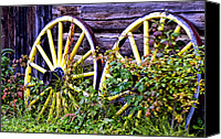 Barkerville Canvas Prints - Wheels Canvas Print by Wayne Stadler