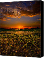 Fall Leaves Canvas Prints - When Time Stood Still Canvas Print by Phil Koch