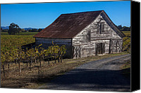 White Barns Canvas Prints - White barn Canvas Print by Garry Gay