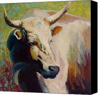 Ranching Canvas Prints - White Bull Portrait Canvas Print by Marion Rose