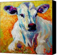 Ranching Canvas Prints - White Calf Canvas Print by Marion Rose