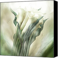 Calla Lily Mixed Media Canvas Prints - White Callas Canvas Print by Carol Cavalaris