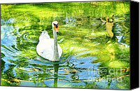 Photography Tapestries - Textiles Canvas Prints - White duck Canvas Print by Benny  Woodoo