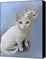 Kittens Mixed Media Canvas Prints - White Kittens Canvas Print by Jane Schnetlage