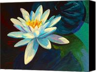 Water Lily Canvas Prints - White Lily III Canvas Print by Marion Rose