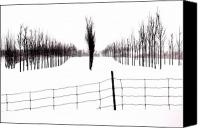 Snowed In Canvas Prints - White lines fenced in  Canvas Print by Russell Styles