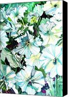 Flora Drawings Canvas Prints - White Petunias Canvas Print by Mindy Newman
