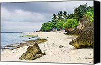 Filipino Canvas Prints - White Sand Beach Moal Boel Philippines Canvas Print by James Bo Insogna