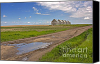Sheds Canvas Prints - White Sheds on a Prairie Farm in Spring Canvas Print by Louise Heusinkveld