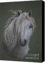 Wild Horse Pastels Canvas Prints - White Wind Canvas Print by Susan Herber