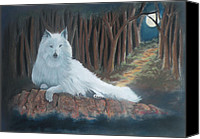 Wolf Pastels Canvas Prints - White Wolf Canvas Print by Charles Hubbard
