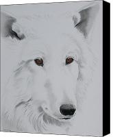 Wolf Pastels Canvas Prints - White Wolf Canvas Print by Sherri Strikwerda