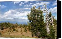 North Canvas Prints - Whitebark Pine trees Overlooking Crater Lake - Oregon Canvas Print by Christine Till