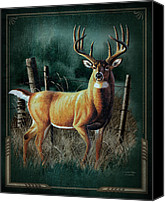 Buck Canvas Prints - Whitetail Deer Canvas Print by JQ Licensing