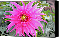Digitally Altered Floral Photo Canvas Prints - Wicked Zinnia Canvas Print by Teresa Blanton