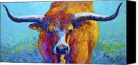 Western Canvas Prints - Widespread - Texas Longhorn Canvas Print by Marion Rose