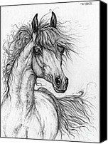 Arabian Horse Drawings Canvas Prints - Wieza Wiatrow polish arabian mare  drawing 1  Canvas Print by Angel  Tarantella