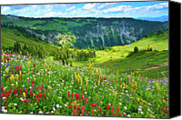 Wildflower Canvas Prints - Wild Flowers Blooming On Mount Rainier Canvas Print by Feng Wei Photography