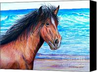 Wild Horse Pastels Canvas Prints - Wild Horse On The Beach Canvas Print by Patricia L Davidson