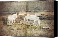 The Rolling Stones Canvas Prints - Wild Horses Couldnt Drag Me Away Canvas Print by Marcie Adams Eastmans Studio Photography