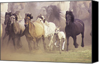 Active Canvas Prints - Wild Horses Running Canvas Print by John Foxx