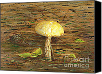 Forest Floor Painting Canvas Prints - Wild Mushroom on the Forest Floor Canvas Print by Judy Filarecki