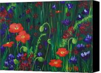 Grass Drawings Canvas Prints - Wild Poppies Canvas Print by Anastasiya Malakhova